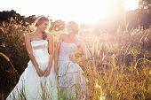 Attractive young bride and bridesmaid in formal attire. They are walking in the country holding hand