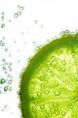 Lime Segment im Wasser Blasen