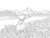 A Nature Landscape With A Deer,mountains,lake  And Trees Image For Adults.line Art Style Illustratio poster