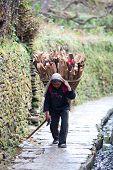 Gurung peasant, Nepal