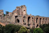 Roma - Circus Maximus