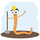 vector cartoon illustration of a worm