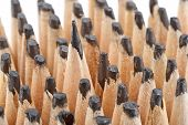 picture of blunt  - Sharp pencil among the blunt - JPG
