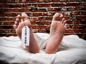 stock photo of mortuary  - Conceptual and funny view about the end of human life - JPG