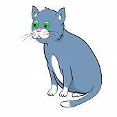 Gato azul. Ilustração vetorial