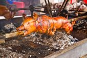 Whole Roasted Pig