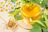 picture of lime-blossom  - linden and chamomile flowers and cup of healthy tea herbal medicine - JPG