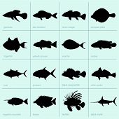 Sea fish icons