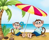 Illustration of a beach with two monkeys