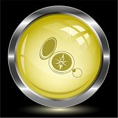 Compass. Internet button. Vector illustration.