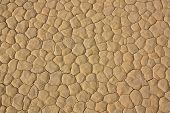 Mud Cracks Of Racetrack Playa