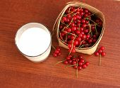 Glass Of Milk And Fresh Red Currant