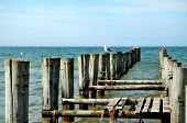 Groynes In The Ocean And Seagulls