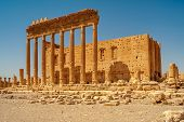stock photo of zenobia  - Ancient Palmyra Ruins  - JPG