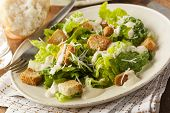 foto of romaine lettuce  - Healthy Green Organic Caesar Salad with Cheese and Croutons - JPG