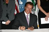 Arnold Schwarzenegger at the Official Signing of California Senate Bill 657, Museum Of Tolerance, Los Angeles, CA. 10-18-10
