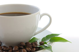 image of coffee coffee plant  - Coffee beans green leaves and white cup - JPG