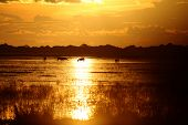 foto of grassland  - Sunset and horses in a Los Llanos tropical grassland in Venzuela - JPG