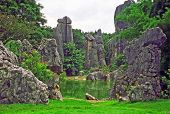 Fragment Of Shilin - Stone Forest - Near Kunming In Yunnan Province, China