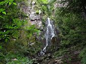 Waterfall In The Vosges