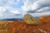 Carpathians landscape with old stones on brown mountain meadow