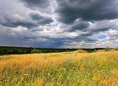 summer meadow under dark clouds before thunder storm