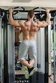 Fitness, bodybuilding. Powerful man during workout