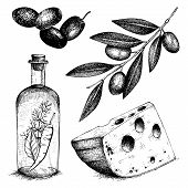 image of collate  - Vector collection of black ink hand drawn olive illustration - JPG