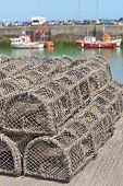 Traps For Capture Fisheries And Seafood