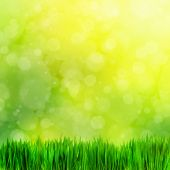 Natural theme. High resolution image of fresh green grass on nature blur. Perfect as background, backdrop, design element. Square composition good to crop if needed.