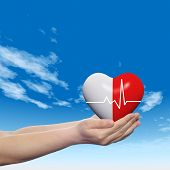 Concept conceptual 3D red abstract human heart sign or symbol held in human man or woman hands, blue sky background