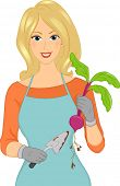 Illustration Featuring a Female Gardener Holding a Trowel in One Hand and Beets in the Other