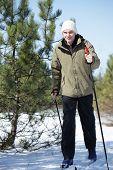 stock photo of nordic skiing  - Cross - JPG