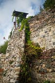 stock photo of ivy vine  - Old high stone wall with vines and ivy - JPG