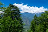 view of Himalaya mountains from Roerich house