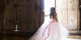 pic of princess crown  - This is the back of a young girl dressed as a princess - JPG