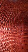 stock photo of alligator  - Alligator patterned background - JPG