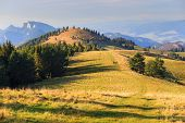 pic of pieniny  - mountain landscape and trees - JPG