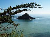 Pacific Coast Highway Island