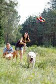 Beautiful woman with playful young dog. Frisbie