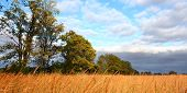 stock photo of winnebago  - A tallgrass prairie landscape in northern Illinois - JPG