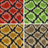 foto of lizard skin  - Set of snake skin patterns for design or ornate - JPG