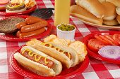 foto of wieners  - Hot dogs hamburgers and other picnic food - JPG