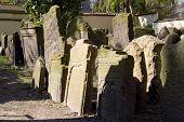 Medieval Cemetery