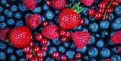 Summer Berries Background. Fresh  Berry Mix With Strawberry, Raspberry, Red Currant,  Blueberry And  poster