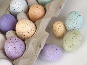 Pastel Easter Dozen