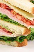 Delicioso sanduíche de clube