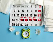 Menstruation Cycle Concept. Menstruation Cycle Concept. Menstruation Calendar With Sanitary Pads, Co poster