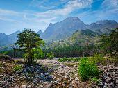 Landscape and trees in Seoraksan National Park, South Korea poster