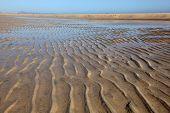 Beach Playa De Sotavento, Fuerteventura